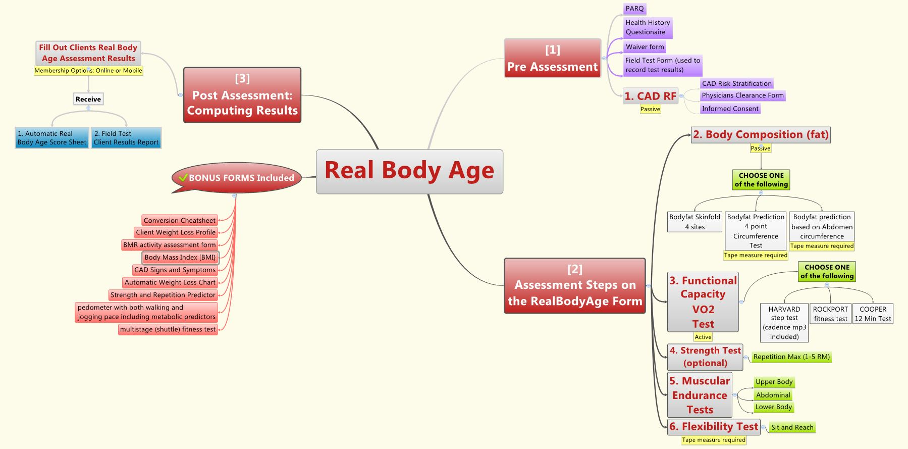 real_body_age_mind_map